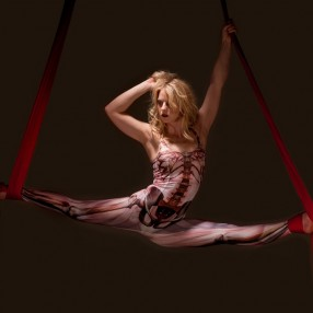 Aerial Dancer Image 4